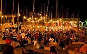 Festival of Darwin